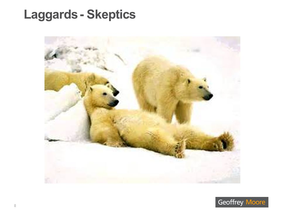Laggards - Skeptics 8