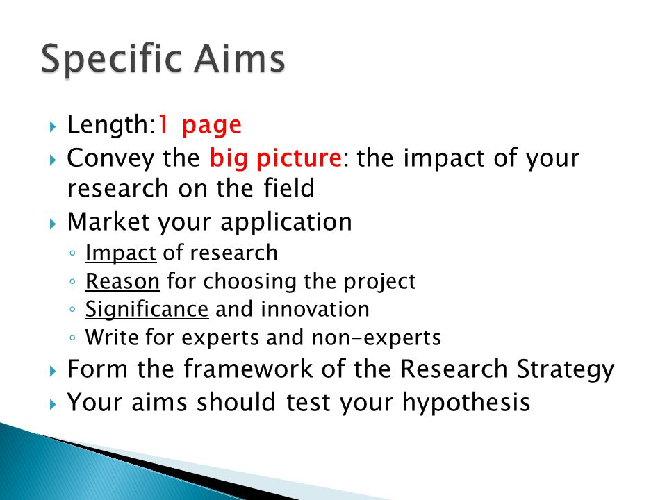  Length:1 page  Convey the big picture: the impact of your research on the field  Market your application ◦ Impact of research ◦ Reason for choosing the project ◦ Significance and innovation ◦ Write for experts and non-experts  Form the framework of the Research Strategy  Your aims should test your hypothesis