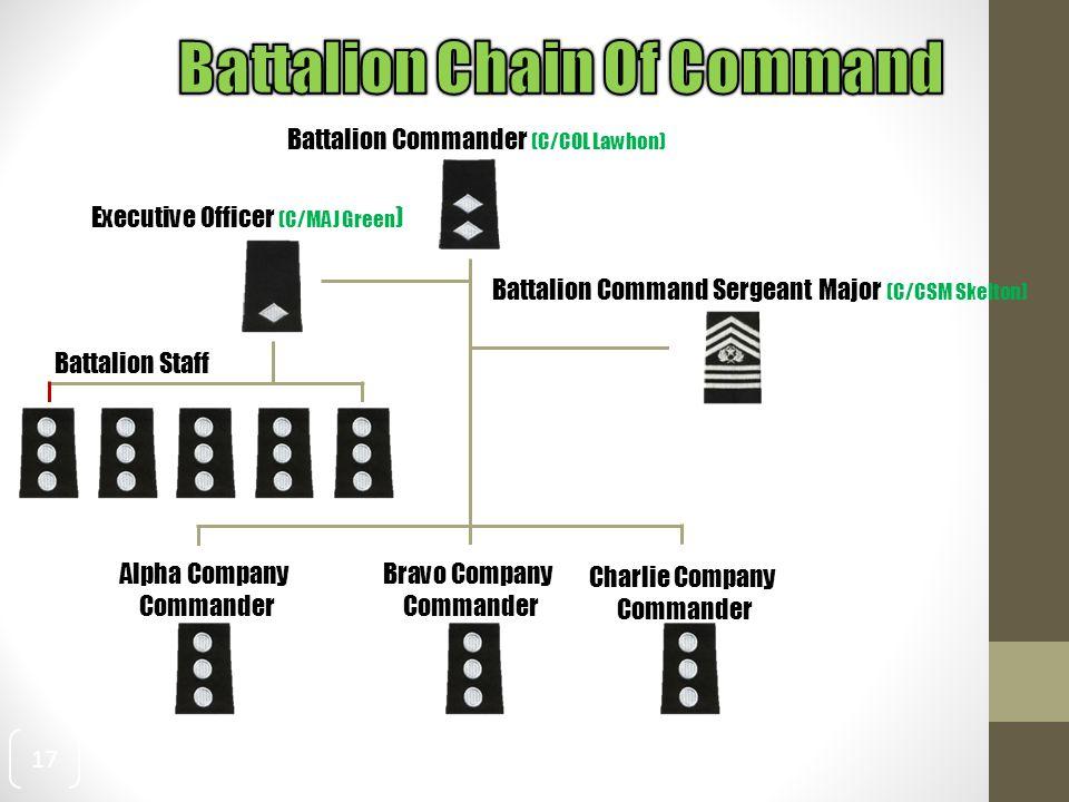 17 Battalion Commander (C/COL Lawhon) Executive Officer (C/MAJ Green ) Battalion Command Sergeant Major (C/CSM Skelton) Battalion Staff Bravo Company Commander Alpha Company Commander Charlie Company Commander