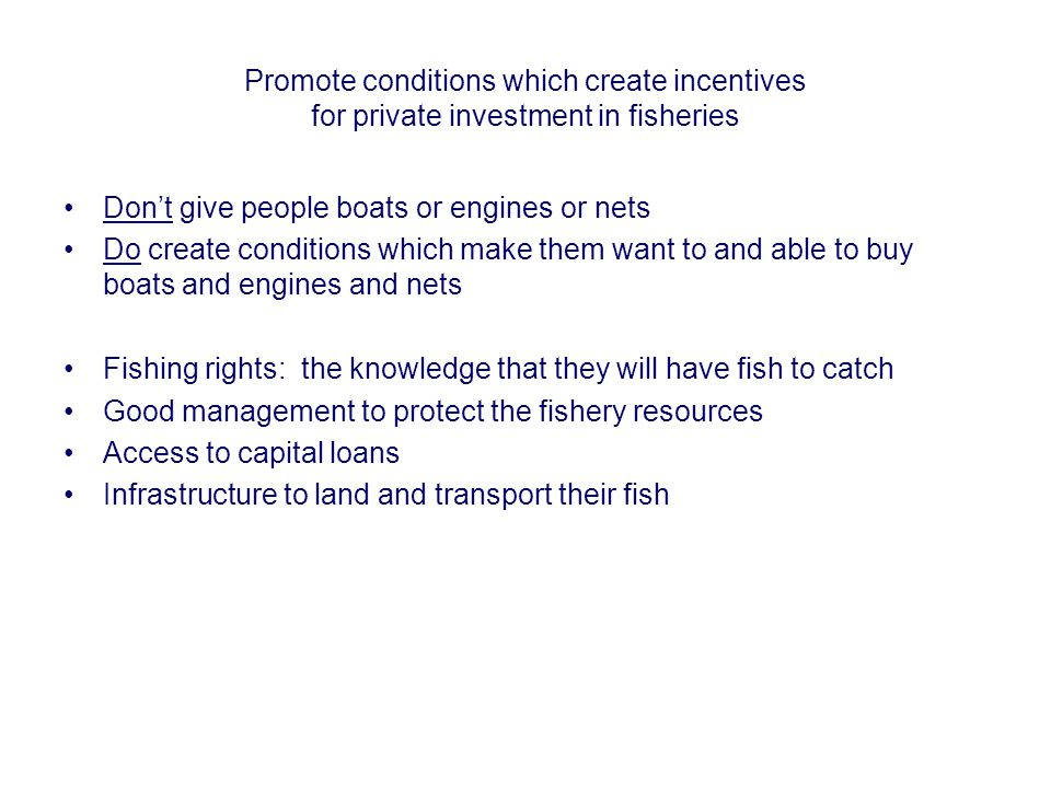 Promote conditions which create incentives for private investment in fisheries Don't give people boats or engines or nets Do create conditions which m