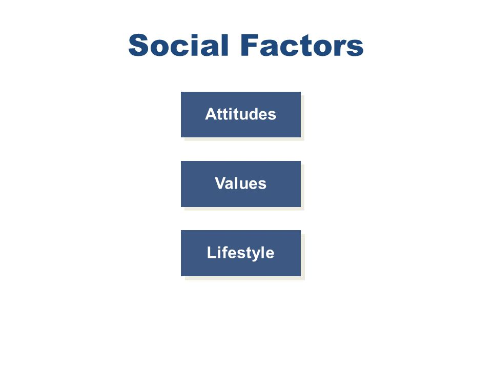 Chapter 4 Copyright ©2012 by Cengage Learning Inc. All rights reserved 8 Social Factors Values Attitudes Lifestyle