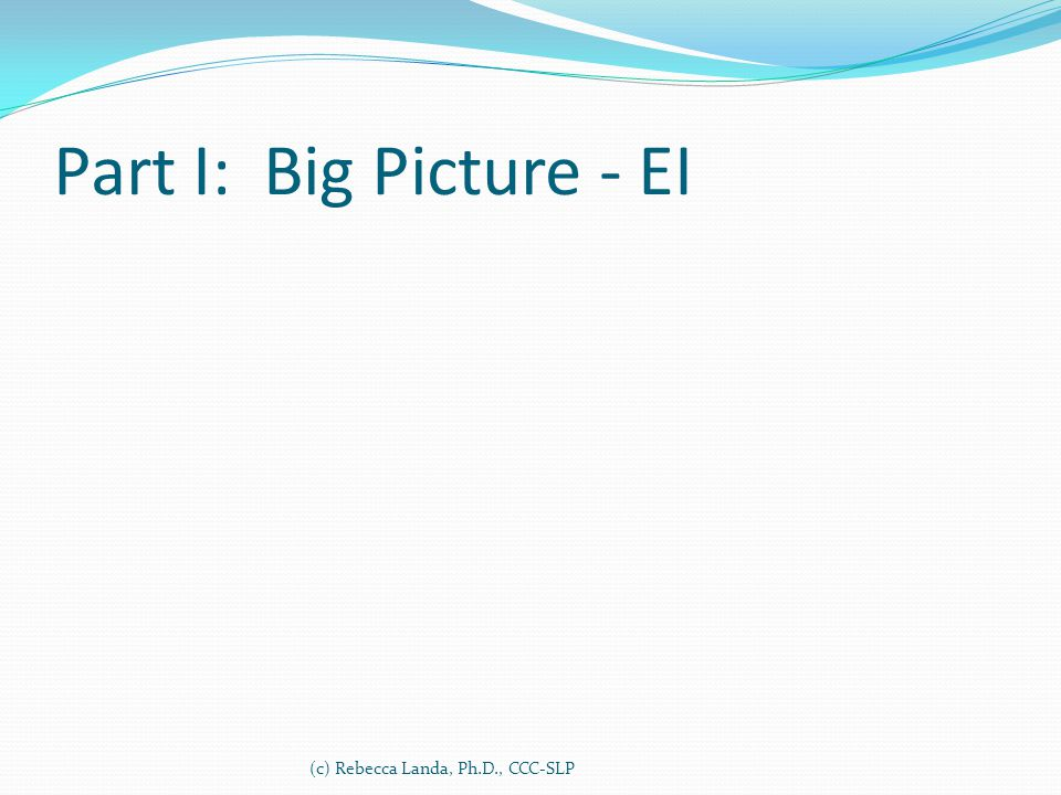 Part I: Big Picture - EI (c) Rebecca Landa, Ph.D., CCC-SLP