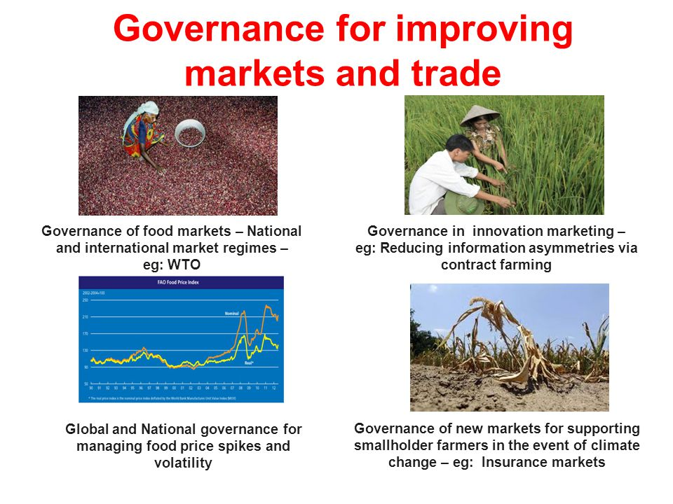 20 Governance in innovation marketing – eg: Reducing information asymmetries via contract farming Governance of food markets – National and internatio