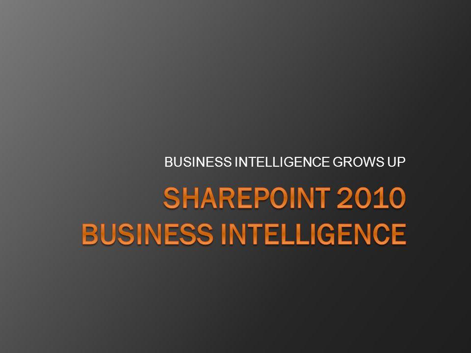SharePoint BI Resources http:// blog.sharepointsalvation.com