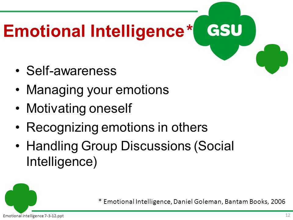 Emotional intelligence 7-3-12.ppt Self-awareness Managing your emotions Motivating oneself Recognizing emotions in others Handling Group Discussions (Social Intelligence) * Emotional Intelligence, Daniel Goleman, Bantam Books, 2006 12 Emotional Intelligence *