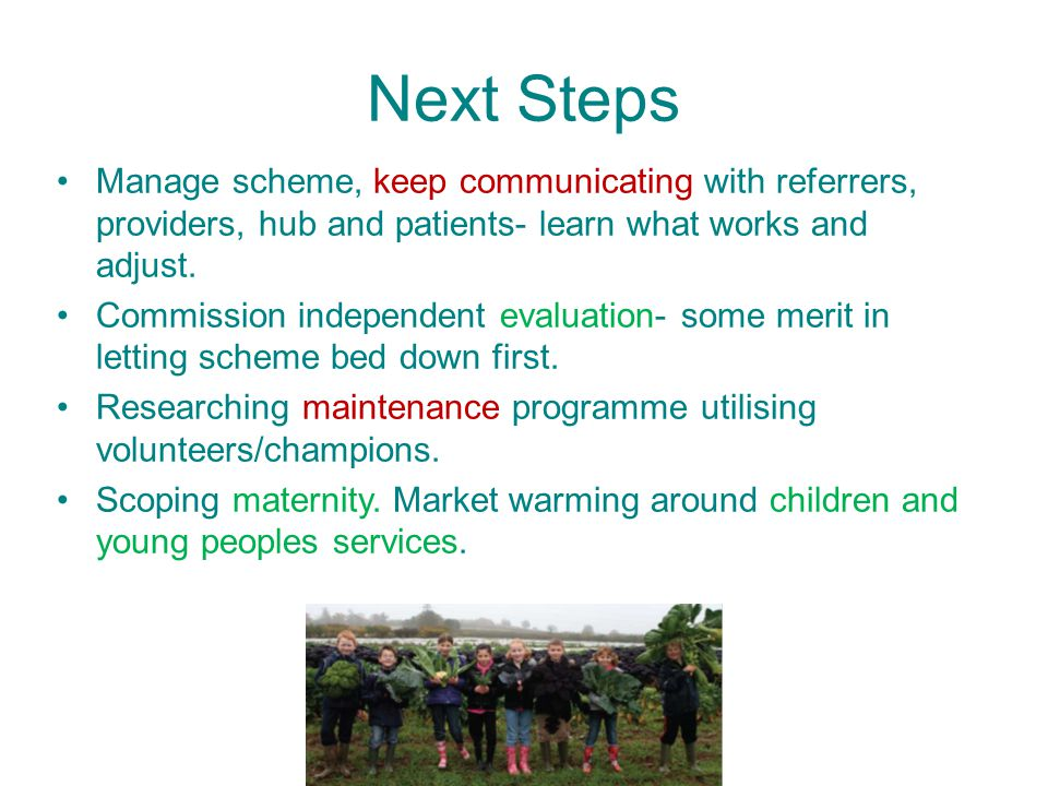 Next Steps Manage scheme, keep communicating with referrers, providers, hub and patients- learn what works and adjust.