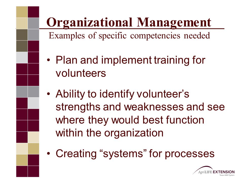 Organizational Management Examples of specific competencies needed Plan and implement training for volunteers Ability to identify volunteer's strengths and weaknesses and see where they would best function within the organization Creating systems for processes