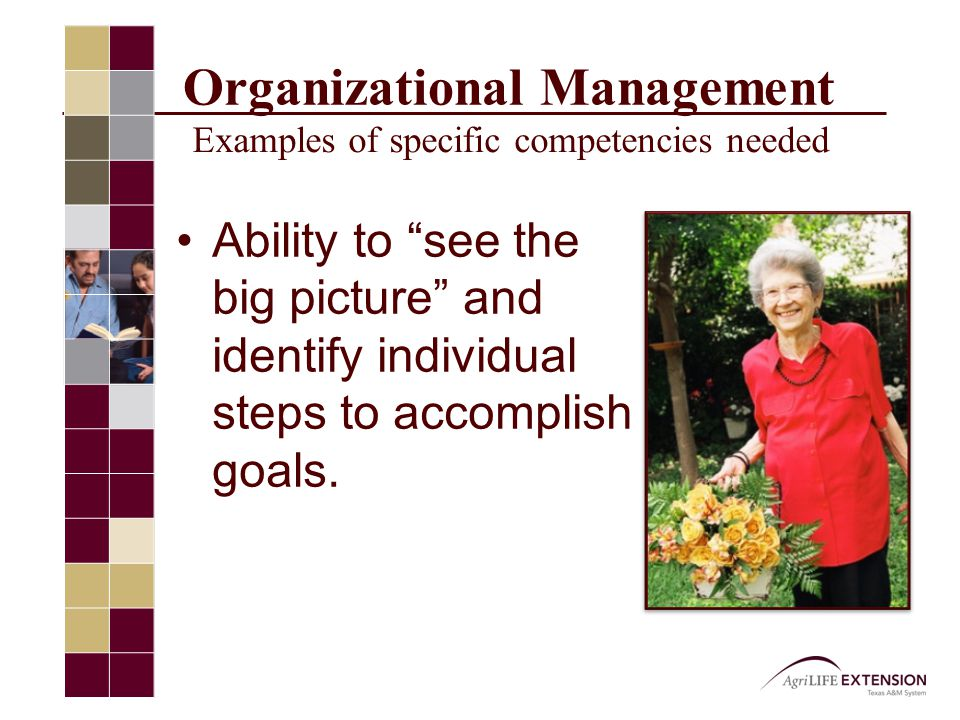 Organizational Management Examples of specific competencies needed Ability to see the big picture and identify individual steps to accomplish goals.