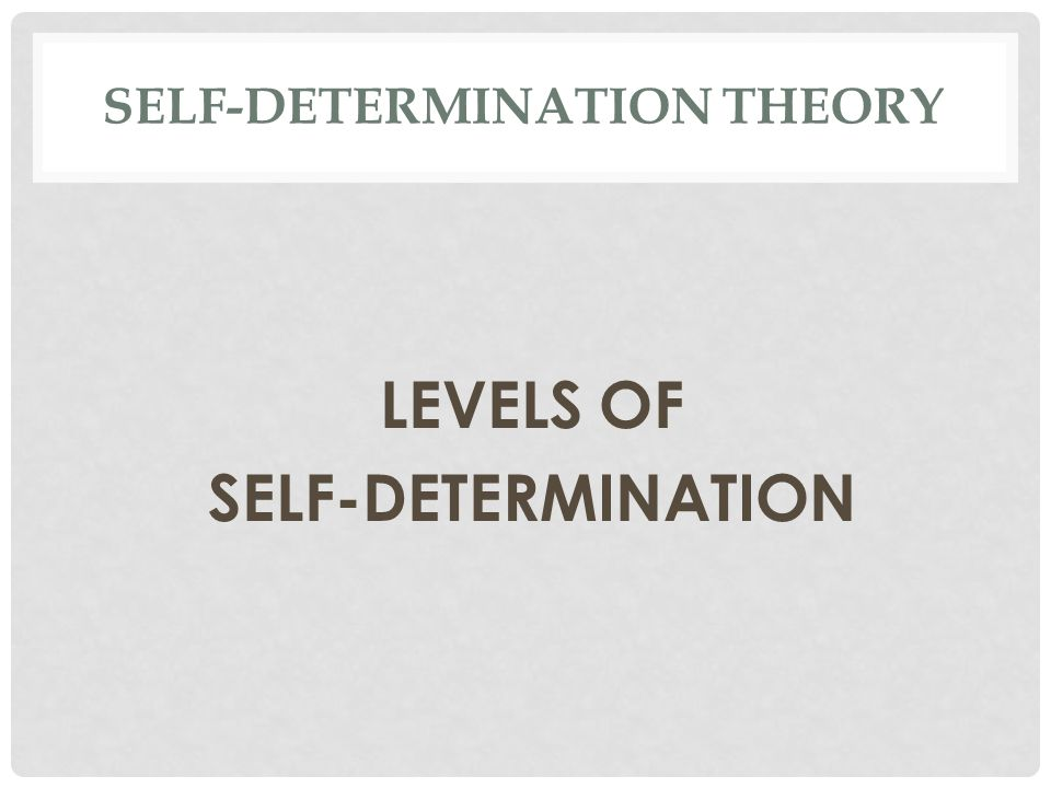 SELF-DETERMINATION THEORY LEVELS OF SELF-DETERMINATION