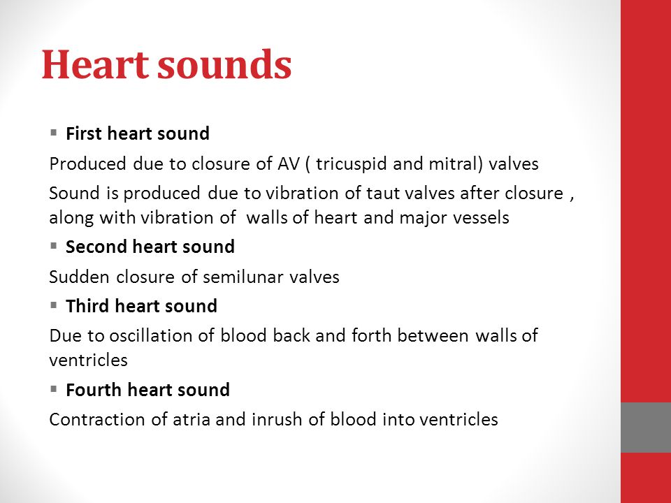 Heart sounds  First heart sound Produced due to closure of AV ( tricuspid and mitral) valves Sound is produced due to vibration of taut valves after
