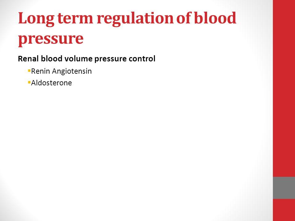 Long term regulation of blood pressure Renal blood volume pressure control  Renin Angiotensin  Aldosterone