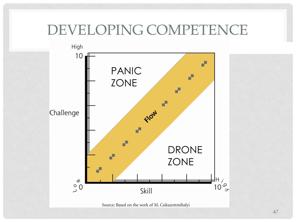 47 DEVELOPING COMPETENCE PANIC ZONE DRONE ZONE