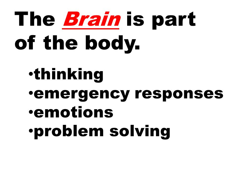 The Brain is part of the body. thinking emergency responses emotions problem solving