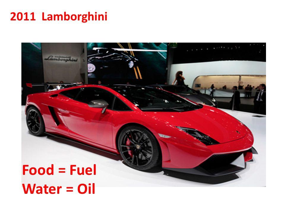 2011 Lamborghini Food = Fuel Water = Oil