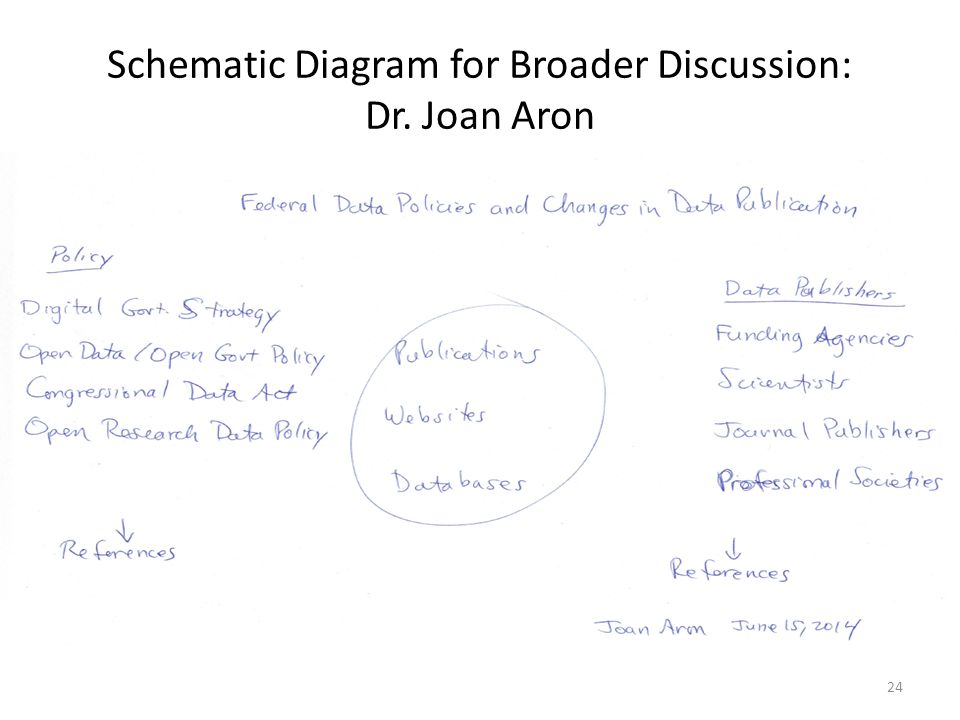 Schematic Diagram for Broader Discussion: Dr. Joan Aron 24