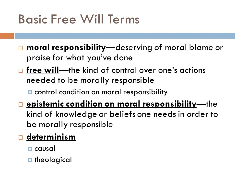 Basic Free Will Terms  moral responsibility—deserving of moral blame or praise for what you've done  free will—the kind of control over one's actions needed to be morally responsible  control condition on moral responsibility  epistemic condition on moral responsibility—the kind of knowledge or beliefs one needs in order to be morally responsible  determinism  causal  theological