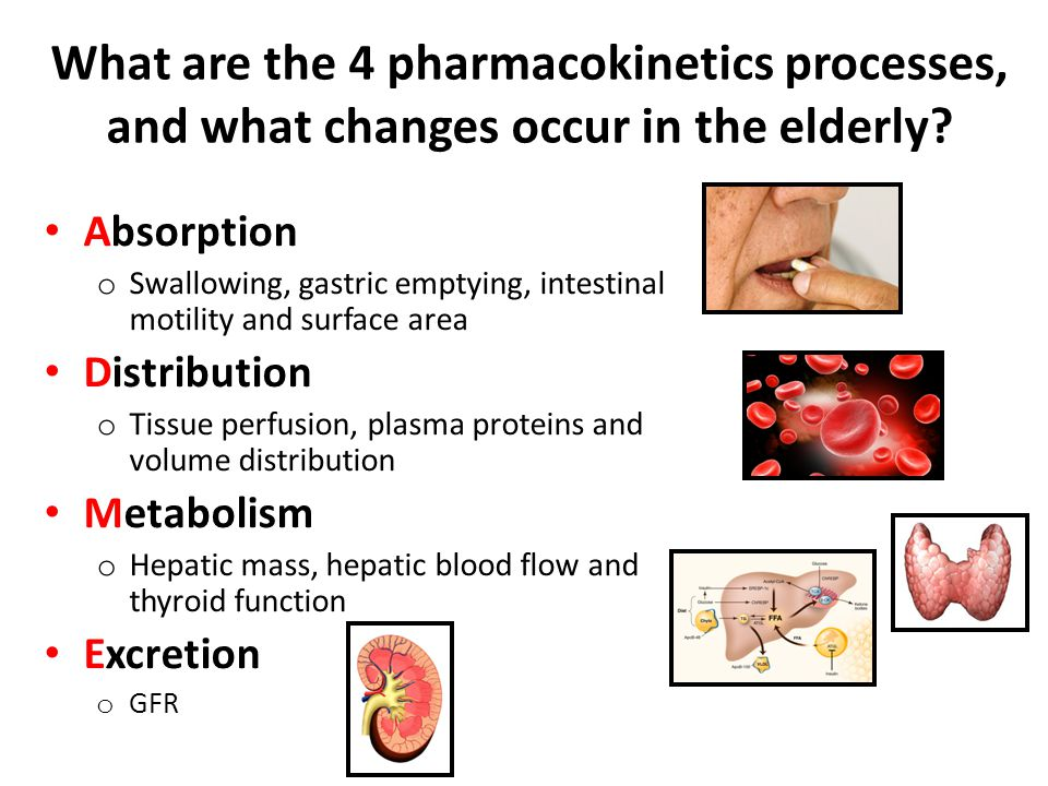 What are the 4 pharmacokinetics processes, and what changes occur in the elderly.