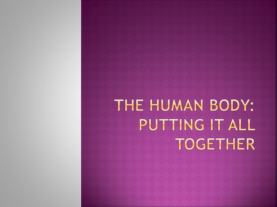 The Human Body: Infrastructure  Council vs.