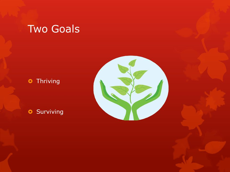 Two Goals  Thriving  Surviving