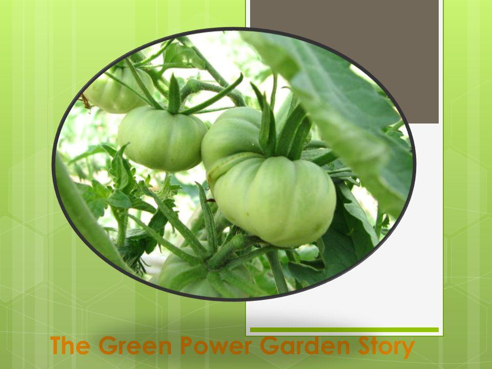 The Green Power Garden Story