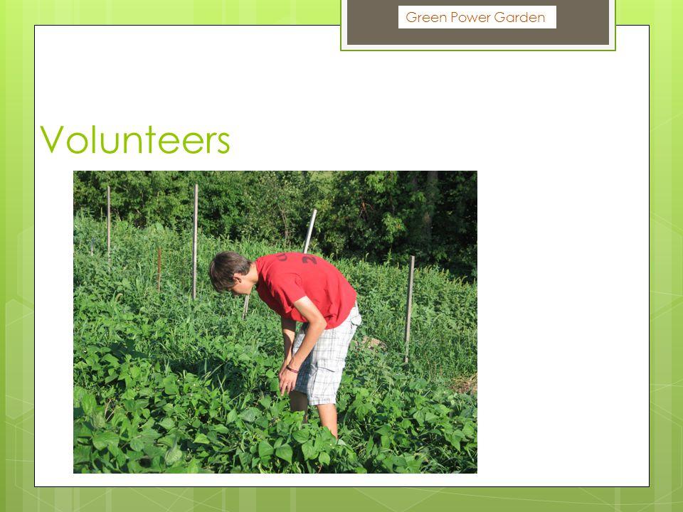Volunteers Green Power Garden