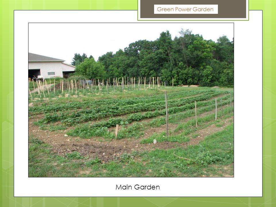 Green Power Garden Main Garden