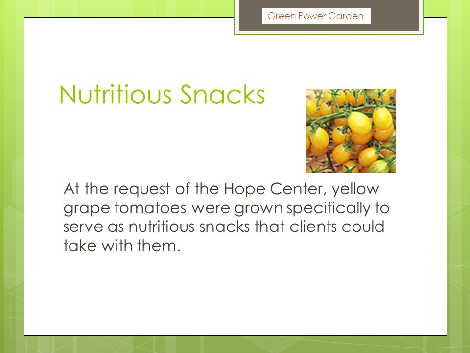 Green Power Garden Nutritious Snacks At the request of the Hope Center, yellow grape tomatoes were grown specifically to serve as nutritious snacks that clients could take with them.