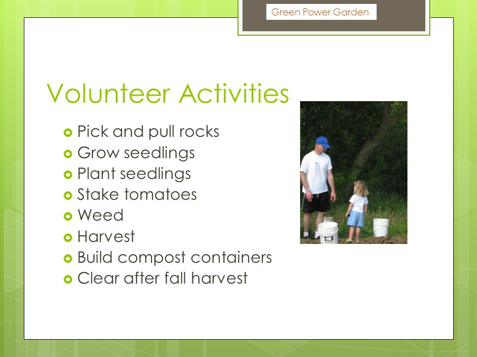 Volunteer Activities  Pick and pull rocks  Grow seedlings  Plant seedlings  Stake tomatoes  Weed  Harvest  Build compost containers  Clear after fall harvest Green Power Garden