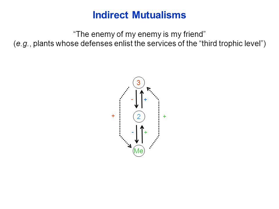 2 Me 3 - + - + + + Indirect Mutualisms The enemy of my enemy is my friend (e.g., plants whose defenses enlist the services of the third trophic level )