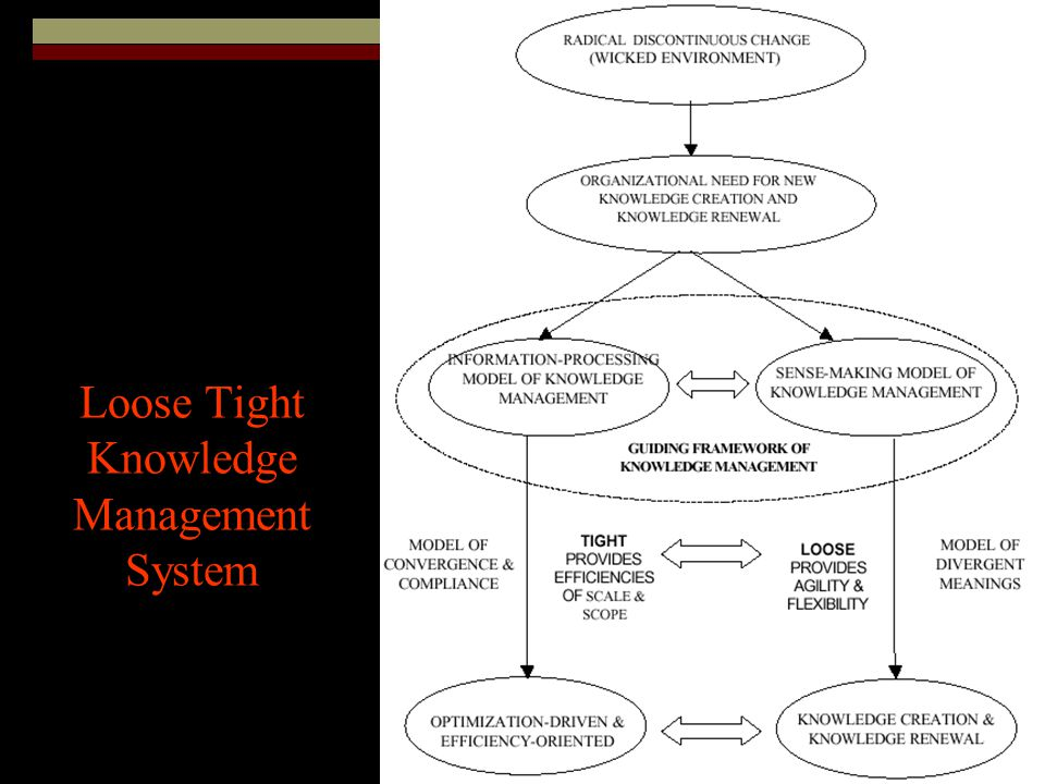 Loose Tight Knowledge Management System