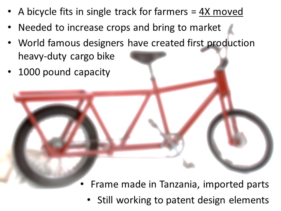 Plan Milestones Prepare – 6 Months Identify site, arrange for tax abatement, other local preparations Enlist assistance of western bike manufacturer for design and purchasing power Build – 2-3 Months Order inventory and renovate location Hire full employee complement and register business, sell first orders Launch Begin manufacturing and shipping In time and with success, broaden product line Kabisa is not publishing its detailed plans to protect its prospects from competition.