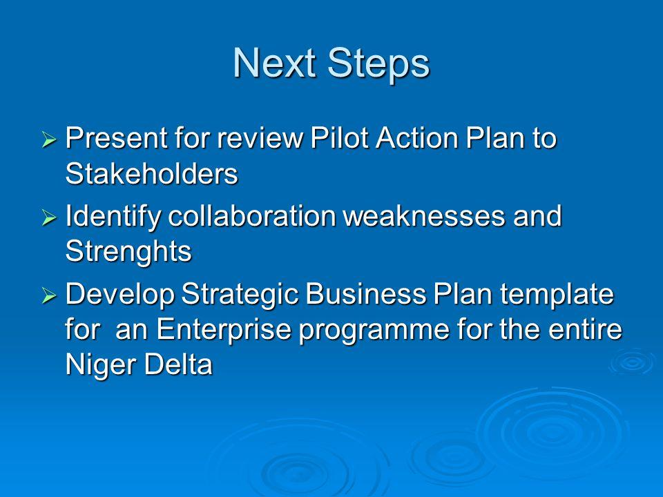 Next Steps  Present for review Pilot Action Plan to Stakeholders  Identify collaboration weaknesses and Strenghts  Develop Strategic Business Plan template for an Enterprise programme for the entire Niger Delta