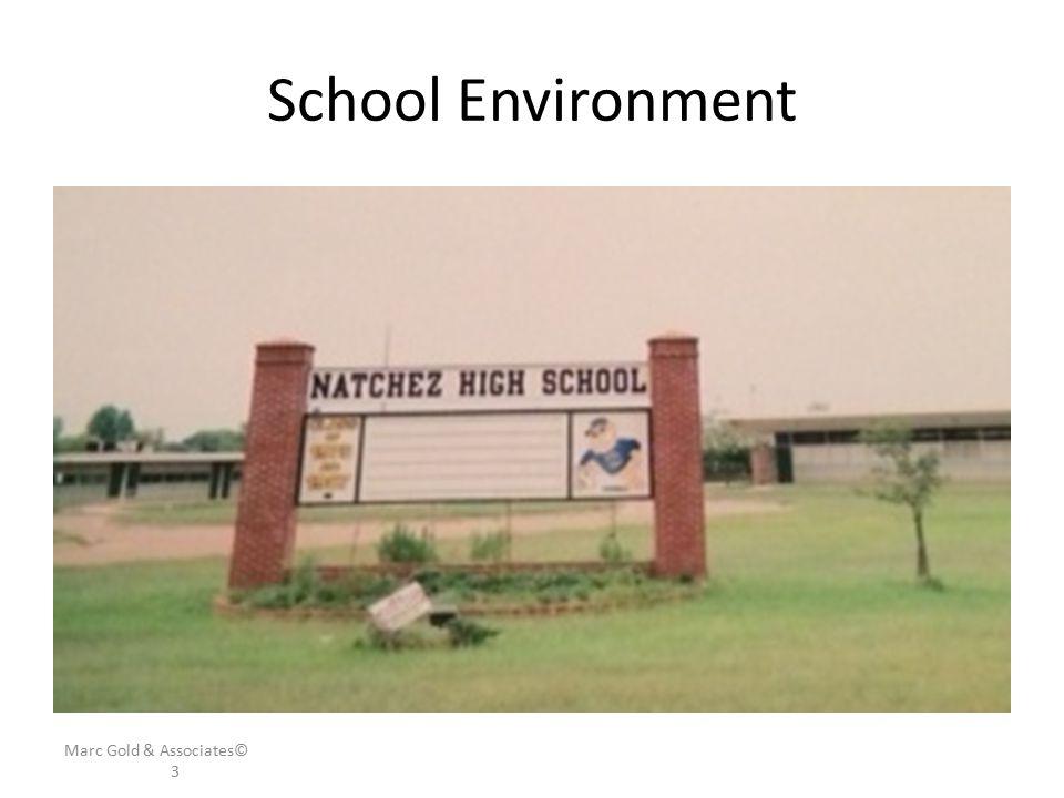 School Environment Marc Gold & Associates© 3