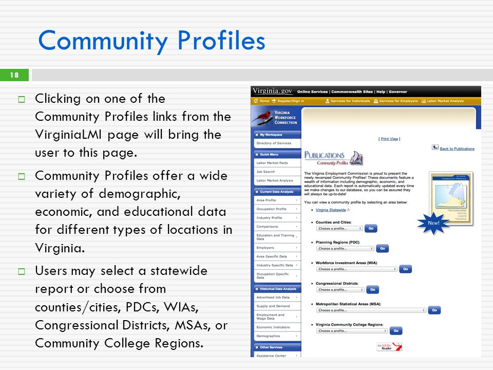 Community Profiles  Clicking on one of the Community Profiles links from the VirginiaLMI page will bring the user to this page.  Community Profiles