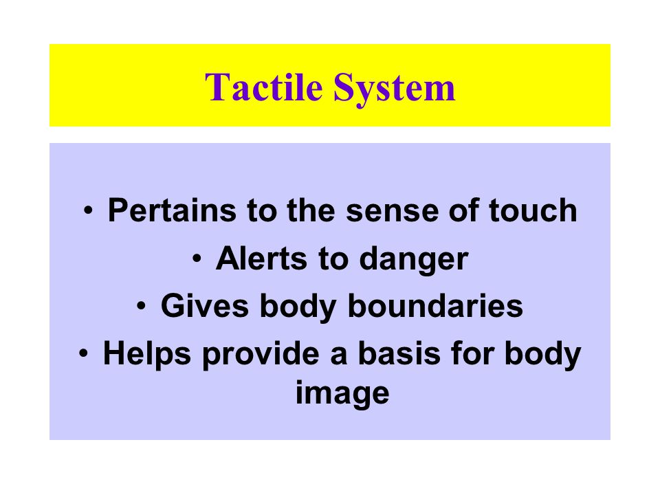 Two Tactile Systems
