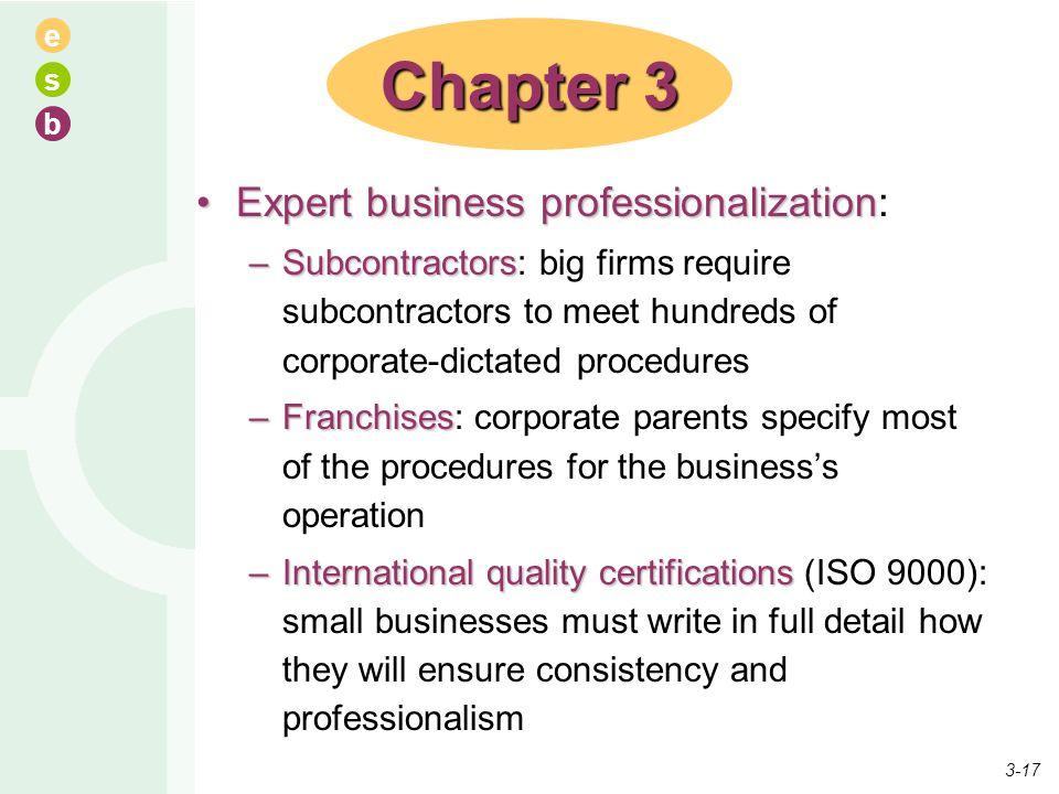 e s b Expert business professionalizationExpert business professionalization: –Subcontractors –Subcontractors: big firms require subcontractors to mee