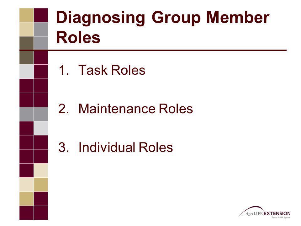 Diagnosing Group Member Roles 1.Task Roles 2.Maintenance Roles 3.Individual Roles
