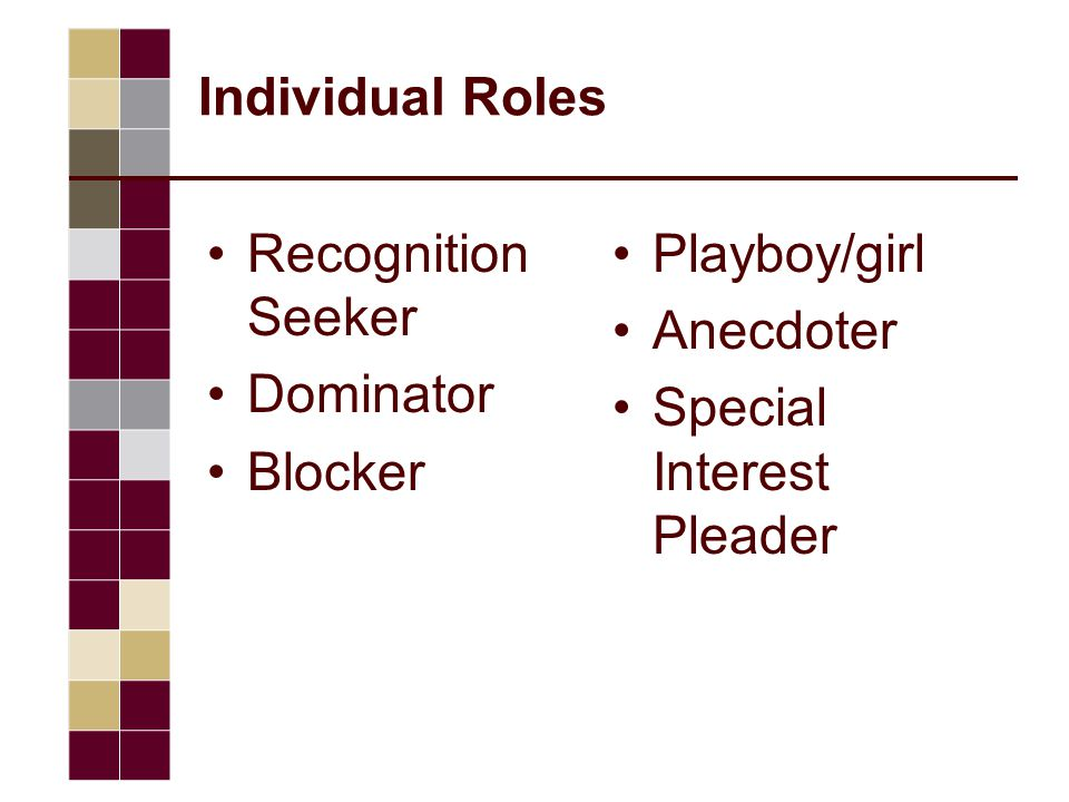 Individual Roles Recognition Seeker Dominator Blocker Playboy/girl Anecdoter Special Interest Pleader