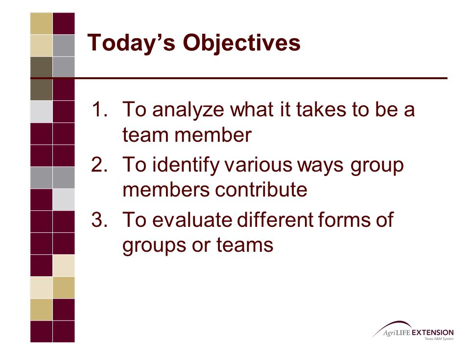 Today's Objectives  To analyze what it takes to be a team member  To identify various ways group members contribute  To evaluate different forms of groups or teams