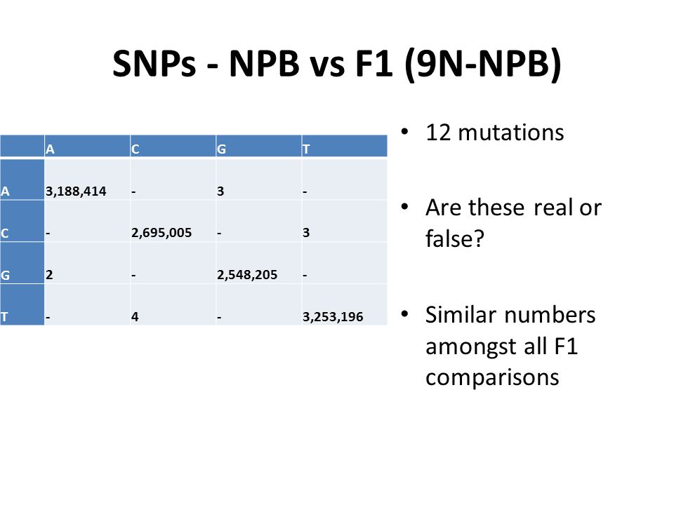 SNPs - NPB vs F1 (9N-NPB) 12 mutations Are these real or false? Similar numbers amongst all F1 comparisons ACGT A 3,188,414 - 3 - C - 2,695,005 - 3 G