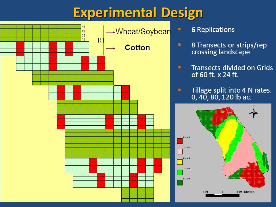 EVALUATION OF GREENSEEKER FOR NITROGEN FETILIZATION IN COTTON ALABAMA REPORT 18 Experimental Design  6 Replications  8 Transects or strips/rep crossing landscape  Transects divided on Grids of 60 ft.