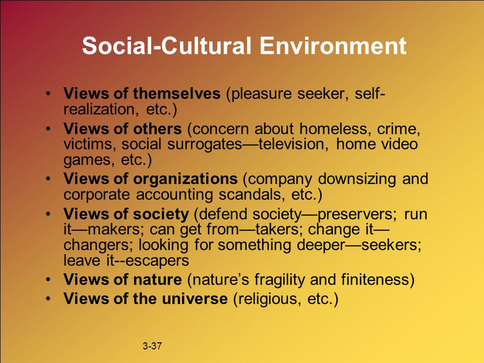3-37 Social-Cultural Environment Views of themselves (pleasure seeker, self- realization, etc.) Views of others (concern about homeless, crime, victim