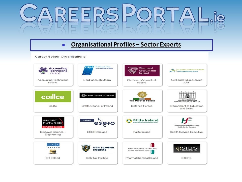 Organisational Profiles – Sector Experts