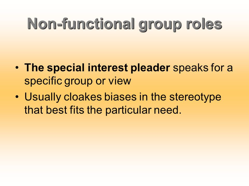 Non-functional group roles The special interest pleader speaks for a specific group or view Usually cloakes biases in the stereotype that best fits th