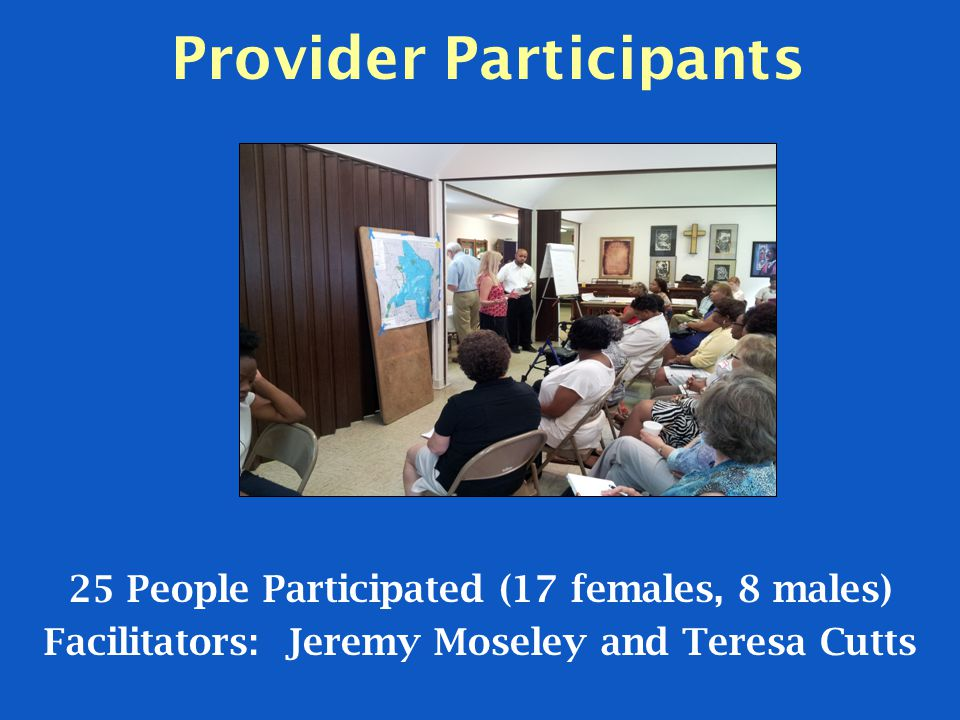 Provider Participants 25 People Participated (17 females, 8 males) Facilitators: Jeremy Moseley and Teresa Cutts