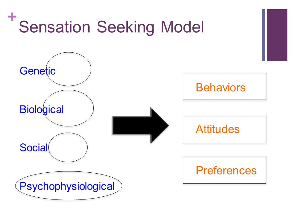 + Sensation Seeking Behaviors Behaviors that elicit increased amounts of stimulation Pursuing stimulating jobs, using drugs, driving recklessly Involve seeking out arousal Associated risk Risk taking, however, is not primary motive in behavior