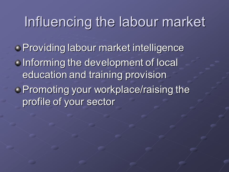 Influencing the labour market Providing labour market intelligence Informing the development of local education and training provision Promoting your workplace/raising the profile of your sector