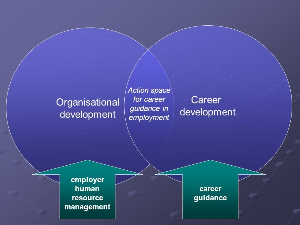 Organisational development Career development employer human resource management career guidance Action space for career guidance in employment