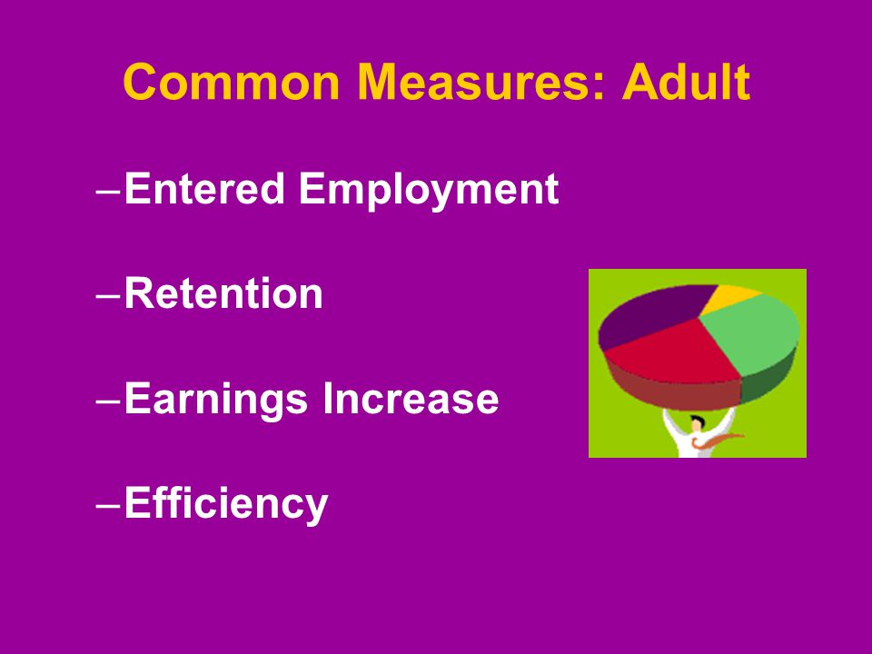 Common Measures: Adult –Entered Employment –Retention –Earnings Increase –Efficiency