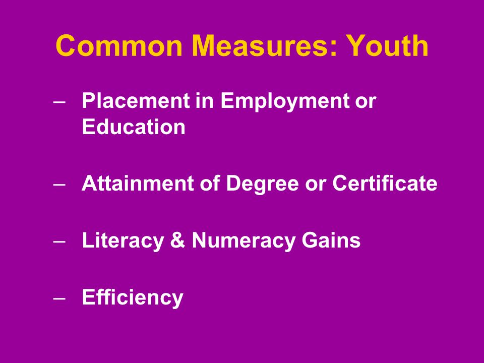 Common Measures: Youth –Placement in Employment or Education –Attainment of Degree or Certificate –Literacy & Numeracy Gains –Efficiency